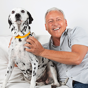 elderly man with a dalmation